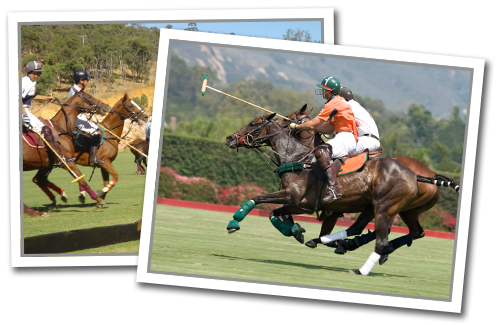 Photos of people playing polo